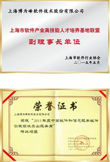 年度中国软件服务商
